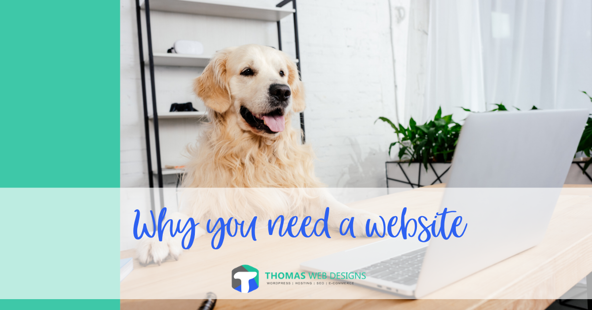 Why Do I Need A Website? Just Having A Facebook Page Or eBay Store Is Not Enough