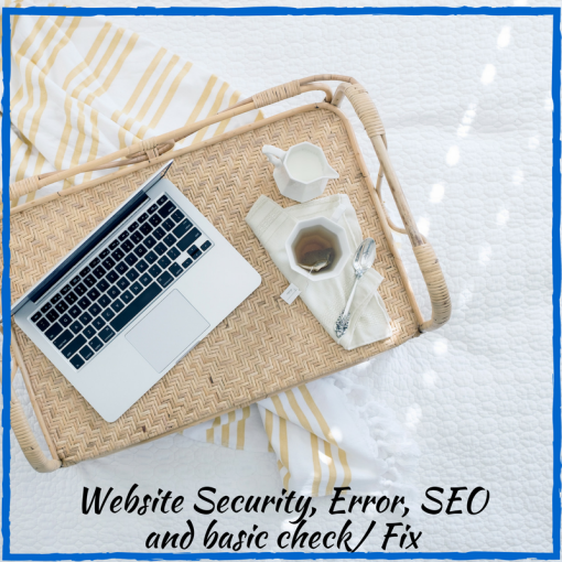 Website Security, Error, SEO and basic check/ Fix